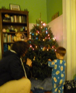 Marcy and Sport decorating the tree