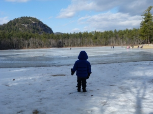 Checking out the frozen lake