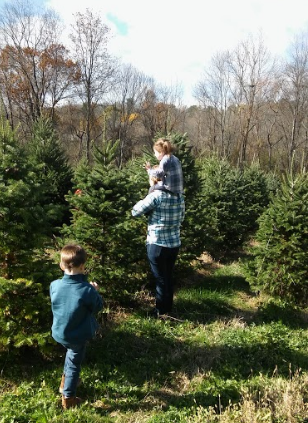 A visit to the Christmas Tree farm.